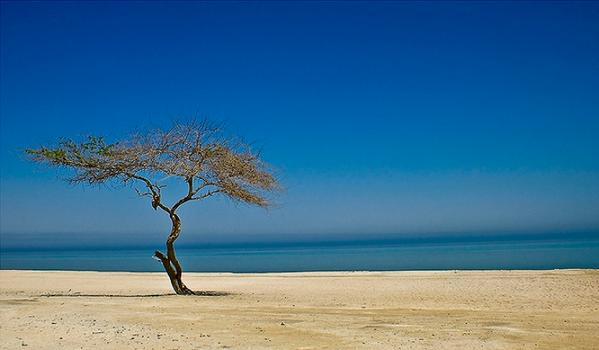 al jazayer beach